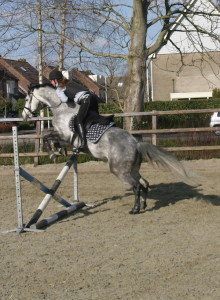 Oefenparcours Romy